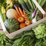 frutta e verdura bio - La Cortevilla