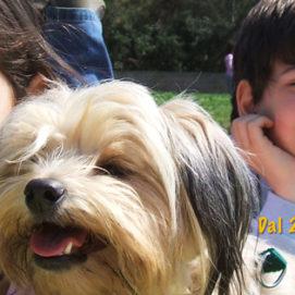 Doggy Days - Vacanze con il vostro cane